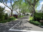 Constantia Place Luxury Retirement Village